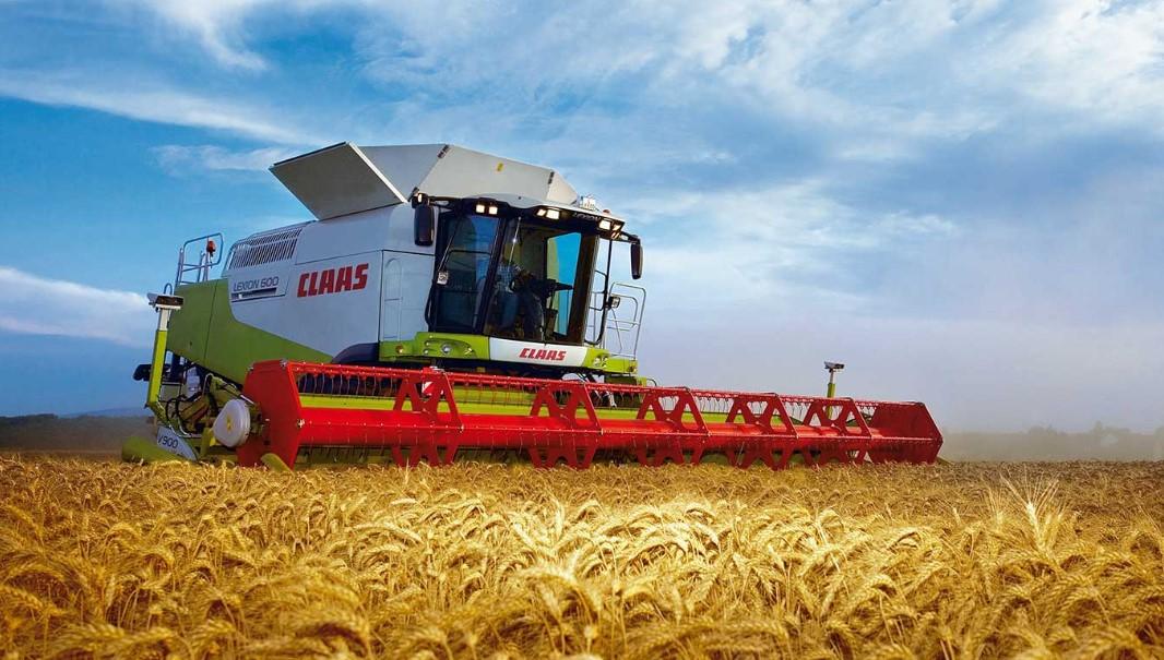 зерноводство